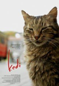 KEDI Review 1