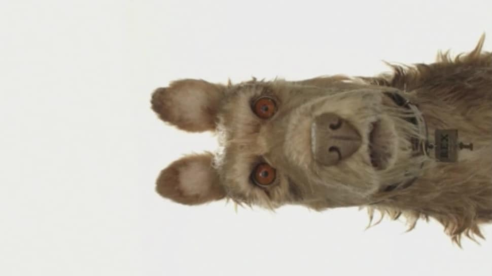 ISLE OF DOGS Review 2