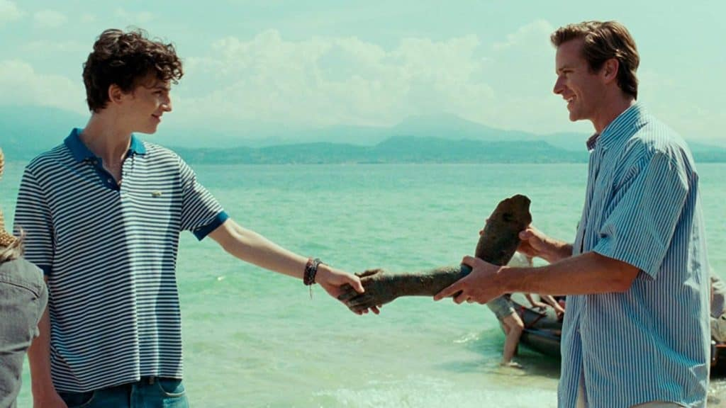 CALL ME BY YOUR NAME Review 2