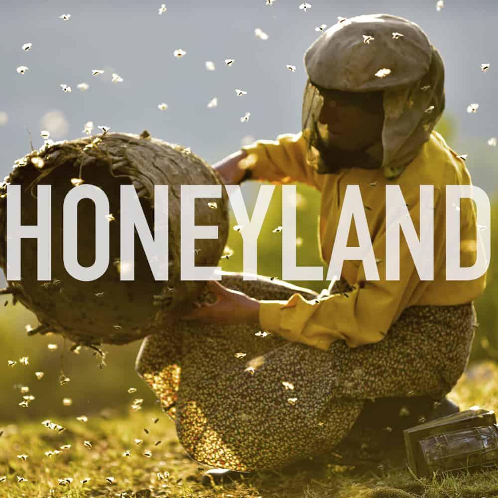 Podcast: 335 - HONEYLAND 1