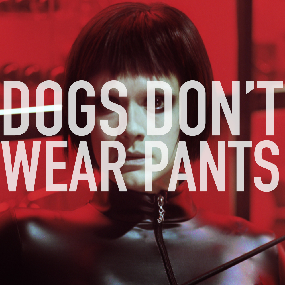 Podcast: 356 - DOGS DON'T WEAR PANTS 1