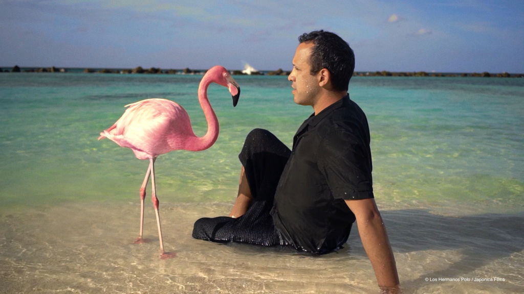 The_Mystery_of_the_Pink_Flamingo_01