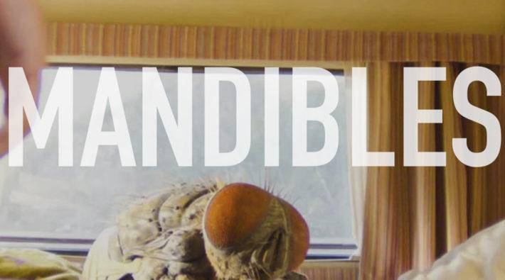 Podcast_mandibles